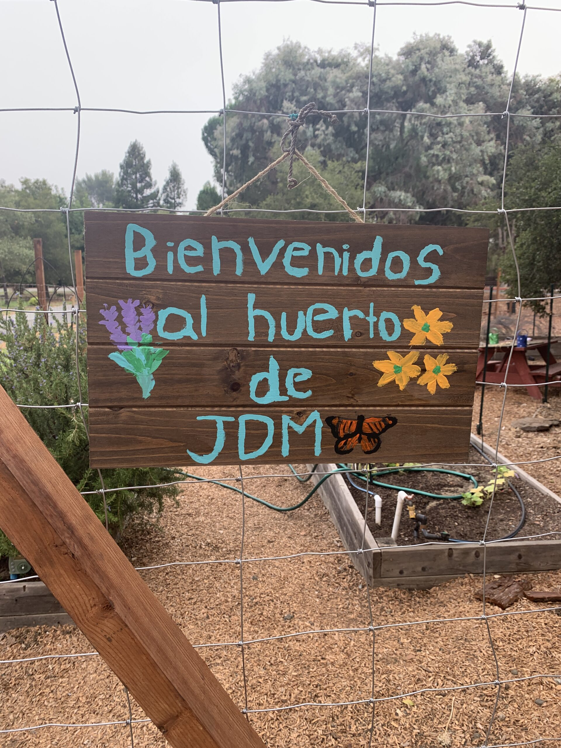 jdm-garden